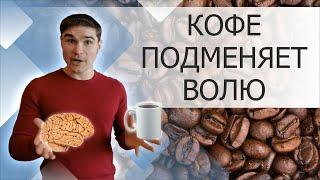 кофеин и мозг, внимание, память. Сколько можно пить кофе в день. Польза и вред кофе память
