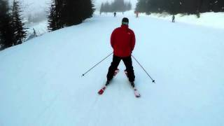 Learning to Ski in Whistler