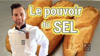 LE POUVOIR DU SEL en boulangerie