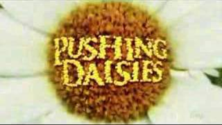 Cabecera Pushing Daisies