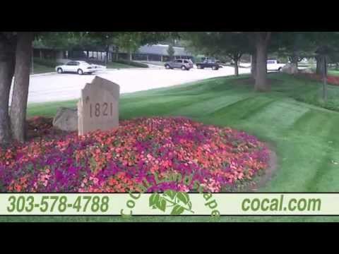 CoCal Landscape | Full-Service Company Specializing in Commercial Landscape Services in Denver, CO
