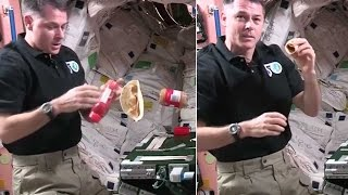 NASA astronaut shows how to make a sandwich in space