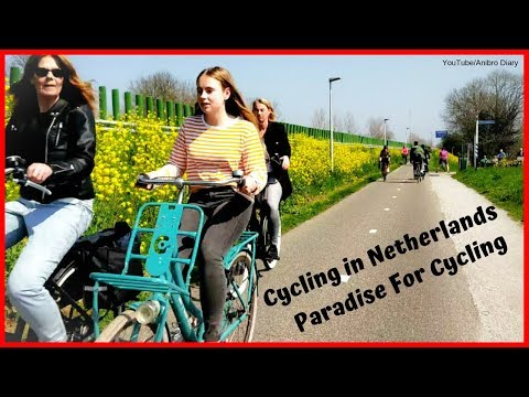 Weekend Cycling Outside Area of Amsterdam City Netherlands | A Very Beautiful Dutch Cycling Street