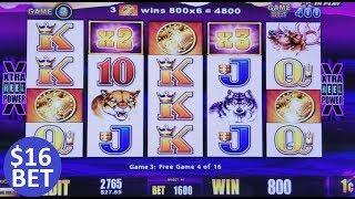$16 MAX BET Buffalo Slot Machine Bonus Won ! Live Wonder 4 Slot Play !