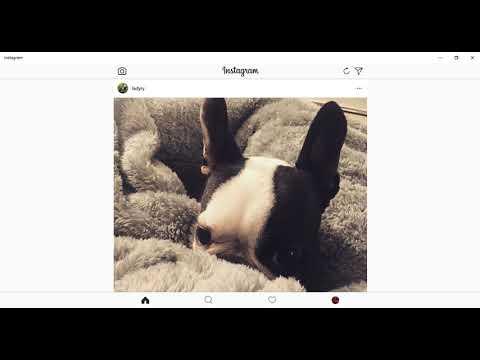 How To DM on Instagram on Windows PC | Instagram Dms on Desktop