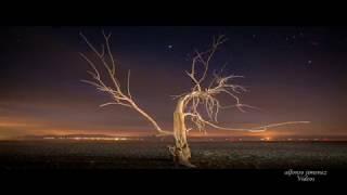 Mark Knopfler - Silvertown Blues
