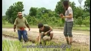 เกษตรพอเพียง - การรู้จักวางแผน 1