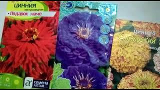 Какие цветы сеем на рассаду в апреле??