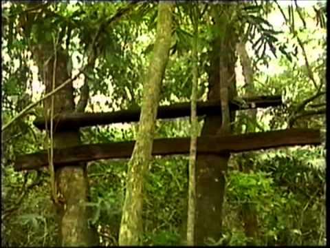 """1ª - Rios Aguapeí, o """"Feio"""", do Peixe e Paraná - TV Fronteira - Pte. Prudente"""