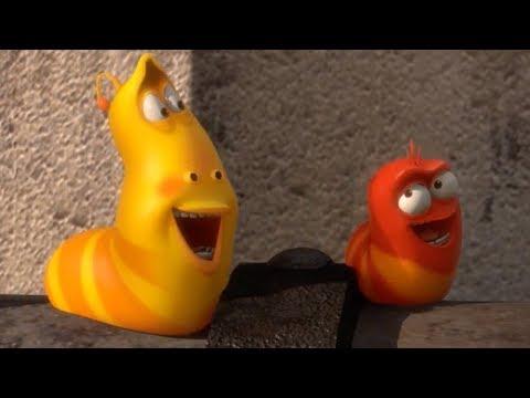 LARVA - PIPE | Cartoon Movie | Cartoons For Children | Larva Cartoon | LARVA Official