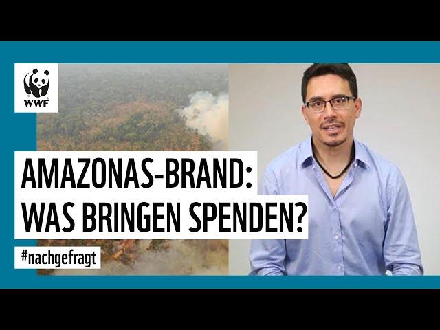 Der Amazonas brennt - was könnt ihr tun, um zu helfen? WWF Deutschland