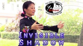 Video The Invisible Shadow: Secret of Tai Chi Training download MP3, 3GP, MP4, WEBM, AVI, FLV November 2017