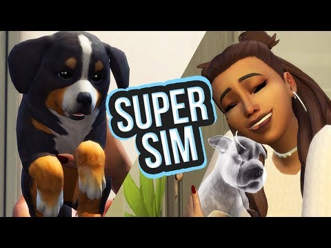 ADOPTING ALL DOGS! - The Super Sim Challenge! - Ep. 10 👑😍