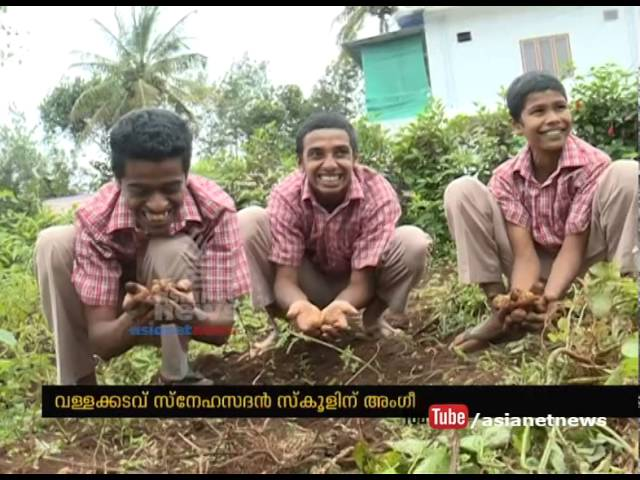 Differently abled student's organic farm got award of Agriculture Department