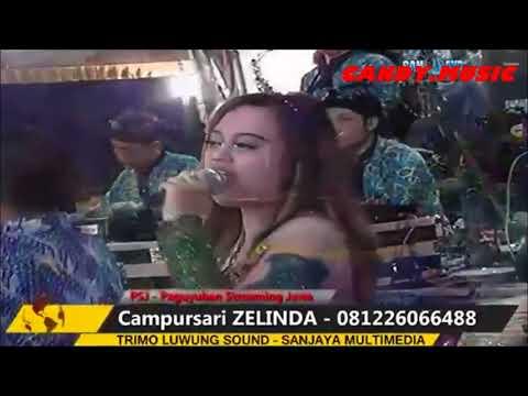 Zelinda Terbaru Bulan November 2017 Juragan Empang