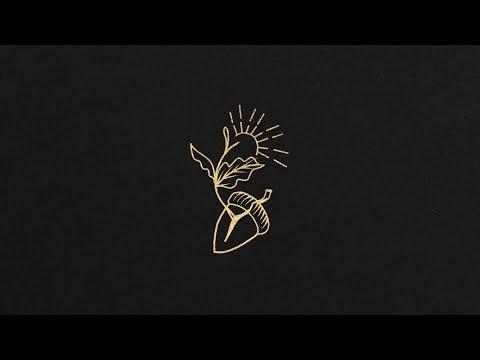 David Gray - The Sapling (Lyric Video)