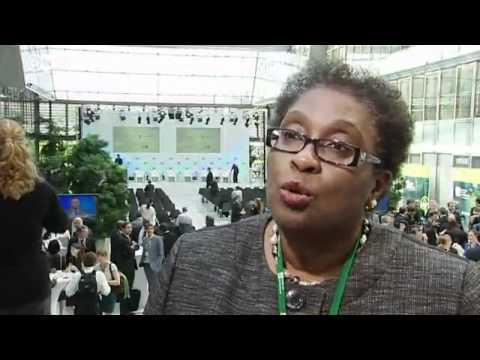 Elizabeth Thompson: UN Coordinator For Rio+20 | Global 3000 Interview