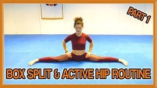 Box Split & Active Hip Routine (Part 1) | Follow Along Yoga Routine