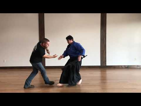 Aikido Gun Disarming Possibilities For Active Shooter Situations