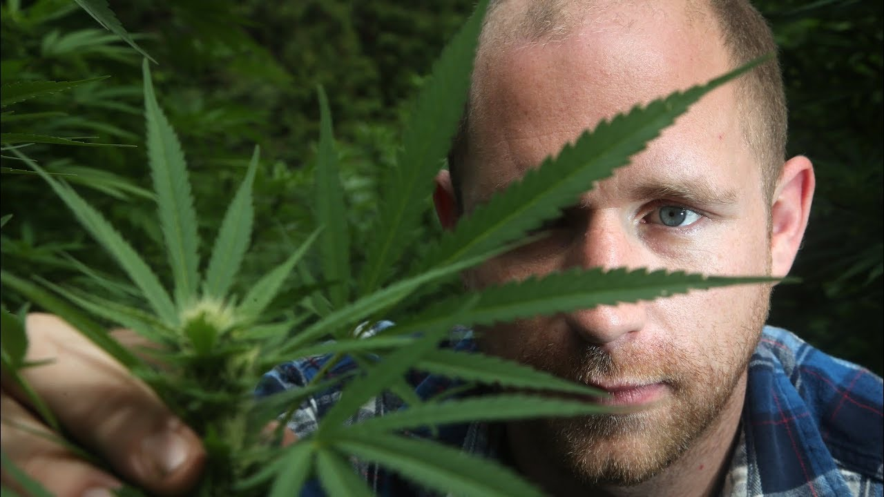 Ottawa Valley farm plans to build cannabis grow-op, spa and
