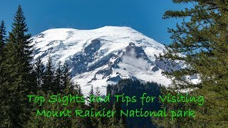Top Sights and Tips for Mount Rainier National Park