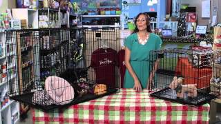 How Big Of A Crate Does A Chihuahua Need? : Dog Grooming & Care