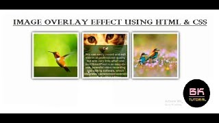 CREATE A IMAGE OVERLAY EFFECT | Text Over an Image  Hover Without JavaScript  BK Tutorial
