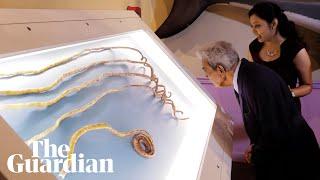 Man with world's longest fingernails finally cuts them off