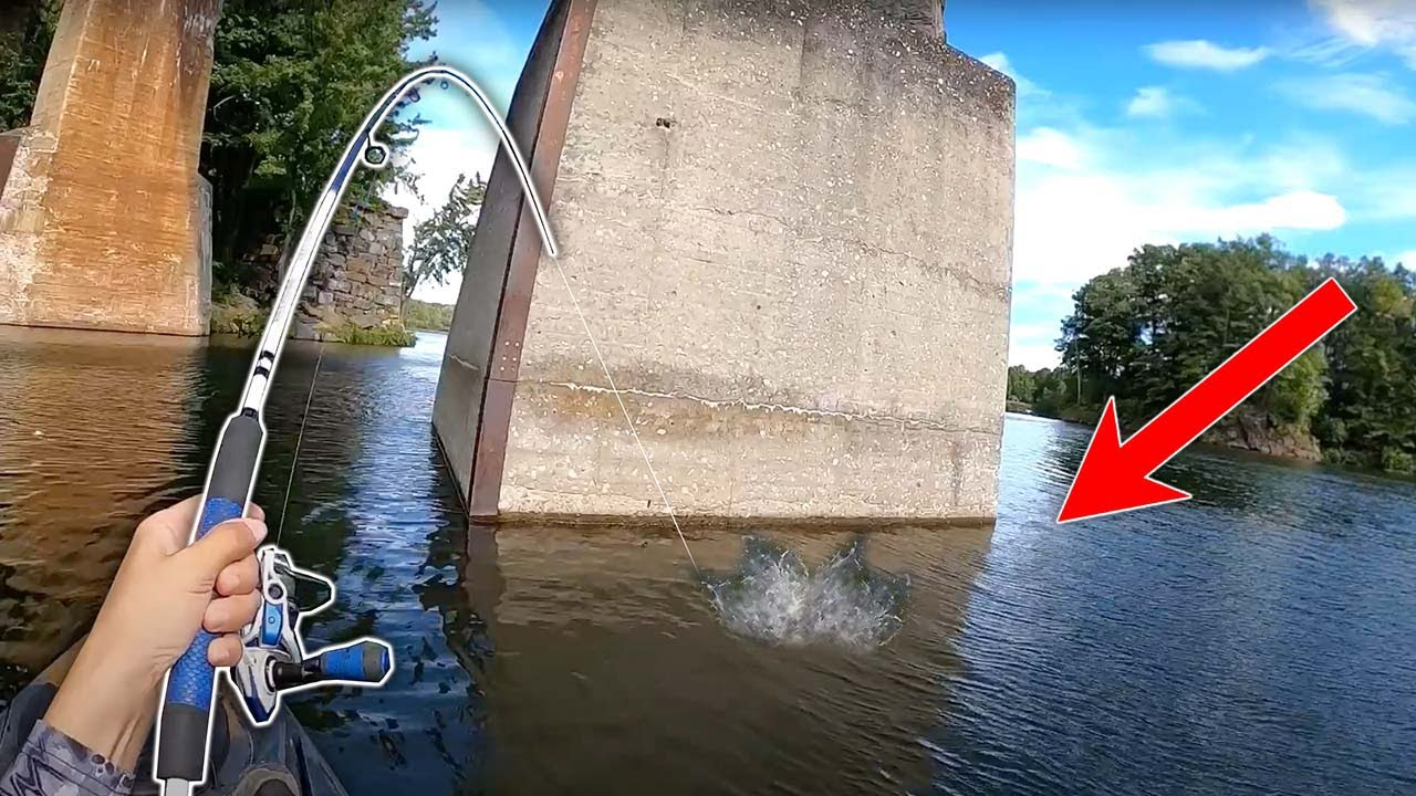 Download THIS is Why You Fish UNDER BRIDGES!!