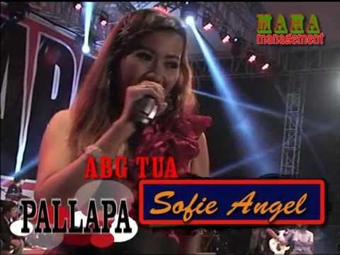 pallapa rockdut Sofie Angel A B G Tua