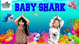 Baby Shark Dance | Sing and Dance! | Animal Songs | PINKFONG Songs for Children cover by Kirsten
