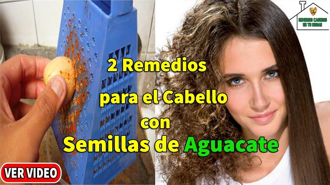 Beneficios de semilla de aguacate para el cabello