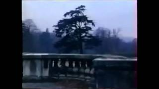 Fuera de sí II (India Song, M. Duras)