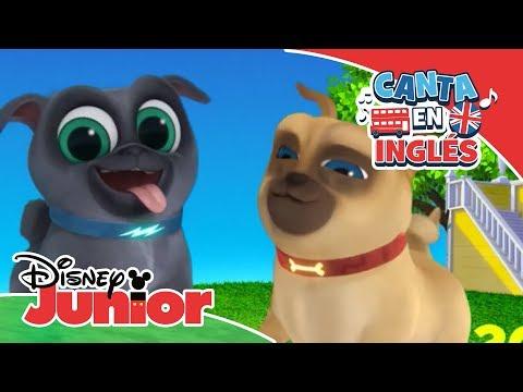 Canta en Inglés – Bingo y Rolly: Pat-A-Cake | Disney Junior Oficial