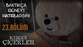 Video Kırgın Çiçekler 23.Bölüm - Güney'den Songül'e Hediye ! download MP3, 3GP, MP4, WEBM, AVI, FLV Desember 2017