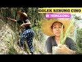 Cari Rebung Bambu Cina     Tkw Hongkong