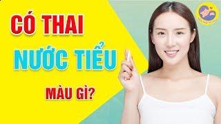 🍀 Cách Nhận Biết Có Thai Qua Màu Nước Tiểu - Kiến Thức Mẹ Bầu
