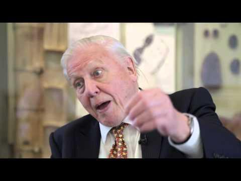 David Attenborough on religion and evolution coexisting