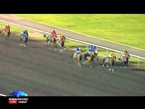Race 3 - Al Dana Wealth Management