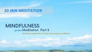 Intro to basic meditation objects    Body Realities   20 Min Guided Meditation