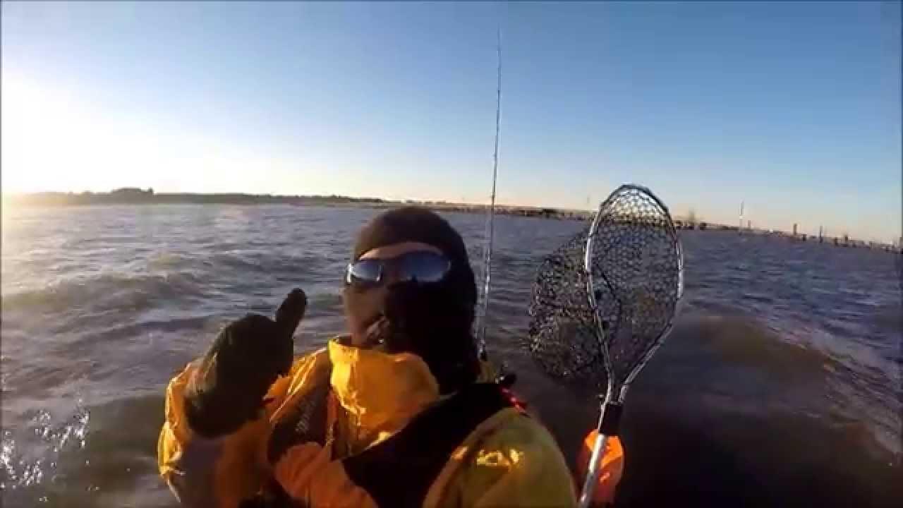 Cape henlopen and ocean city inlet nov 19 2014 youtube for Cape henlopen fishing report