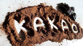 Невероятные факты о какао! Узнайте, почему так необходимо пить какао, особенно, если вы старше 40