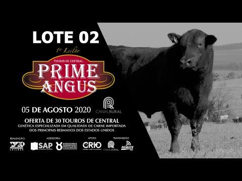 LOTE 02    BLACK OPAL TE863 GALLAGHER Prod  Agência El Campo