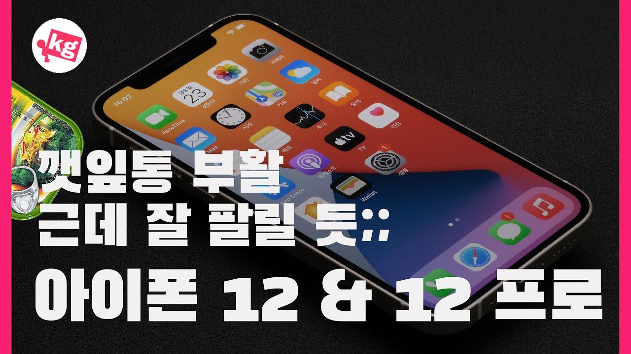 깻잎통 부활!! 아이폰 12 & 12 프로 개봉기 [4K]