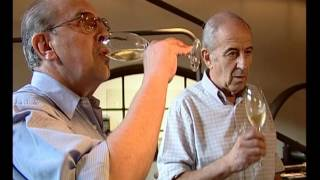 Route des vins - L'argentine