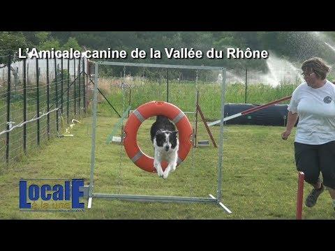 Locale à la Une   Amicale Canine Vallée du Rhône   Soyons