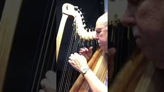 The Carnival of Venice -Visit JohnKovac.com to make a harp