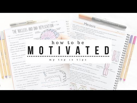 How to be Motivated - 10 Tips for Motivation   studytee