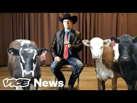 What The Hell Are Livestock Auctioneers Actually Saying?