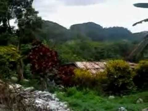 jamaica scenery ,,, bird mountain hanover june 2009